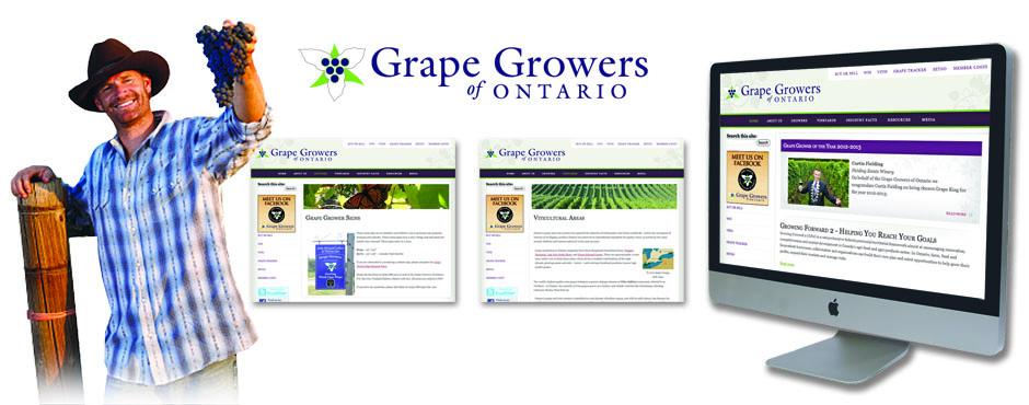 Grape Growers of Ontario Composite1-slider