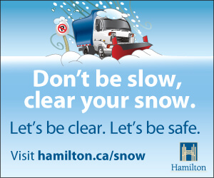 Hamilton Snow Plow Big Box Ad 8-tiny
