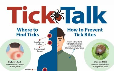 Putting the Bite on Ticks